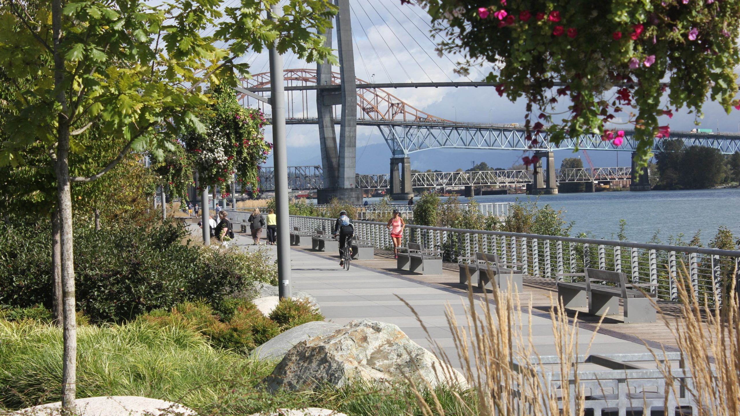 New Westminster Pier Park on a sunny day, with several pedestrians, bikers, and joggers traversing down the boardwalk